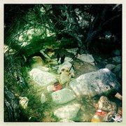Rock Climbing Photo: Woof.