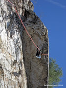 Rock Climbing Photo: rapping from the new bolts above Greenwall