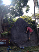 Rock Climbing Photo: First time the climbing shoes have been on in 6 mo...
