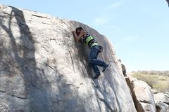 Rock Climbing Photo: EB Boulder located under the Eucalyptus tree in th...