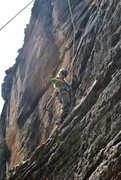 Rock Climbing Photo: Kayla seconding Thunder Will, about midway up befo...