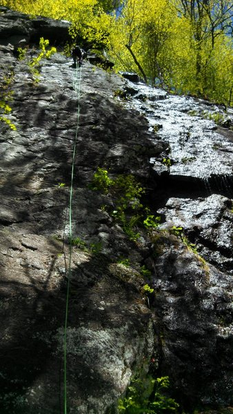 Matt rigging a rappel on Curly for President. Bolts are visible to the left of the rope.