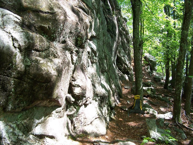 The view along the base of the crag, looking East.