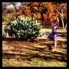 slackline yoga in texas