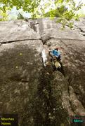 Rock Climbing Photo: Momo off-width