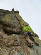 Rock Climbing Photo: The Bird...sizing up the Bird.