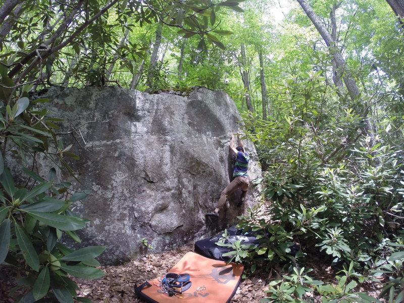 Rock Climbing Photo: Death Tree Boulder