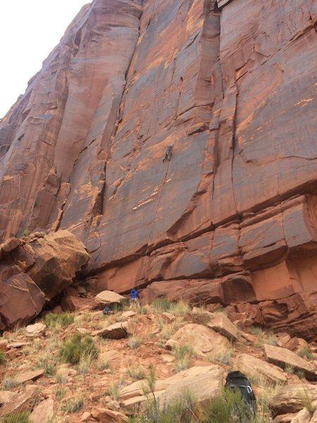 Rock Climbing Photo: Amazing puma