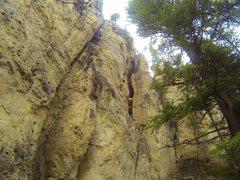 Rock Climbing Photo: Roid Strong, 5.12a