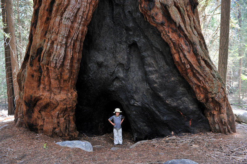 The Upper Kern River Valley is home to the southern-most stand of old-growth giant sequoias, making the Trail of a Hundred Giants an excellent rest-day activity.