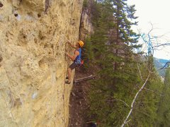 Rock Climbing Photo: Pulsating Fantasticals!
