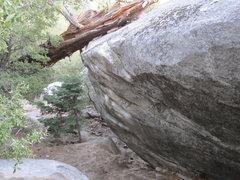 Rock Climbing Photo: Austin Powers