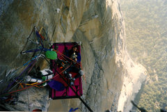 Rock Climbing Photo: The Shield, El Capitan