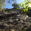 The highlight of the climb is partly obscured by the leaf on the right side of the photo.