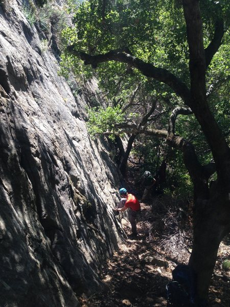 Rock Climbing Photo: Christian (red shirt) has has foot on Walls.  Alex...