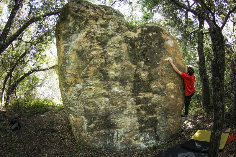 Rock Climbing Photo: Reaching the scrunched crux on the Memorial Proble...