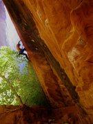 Rock Climbing Photo: Photo credit: Cindy Mitchell