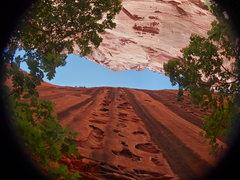 Rock Climbing Photo: Instant Classic