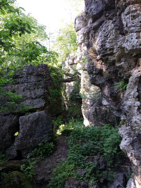 One of the trails that cuts through the Southern section of the escarpment. The Northern section is one continuous wall, while the Southern bit is ripe for bouldering, with the rock breaking into numerous crevices large enough to walk through.