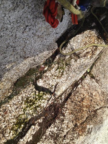 midway ledge malamute, grub street complex 10c