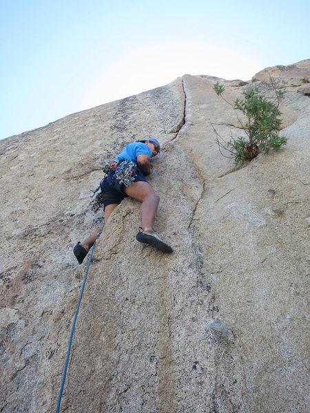 Rock Climbing Photo: Sean leading Espresso Crack.