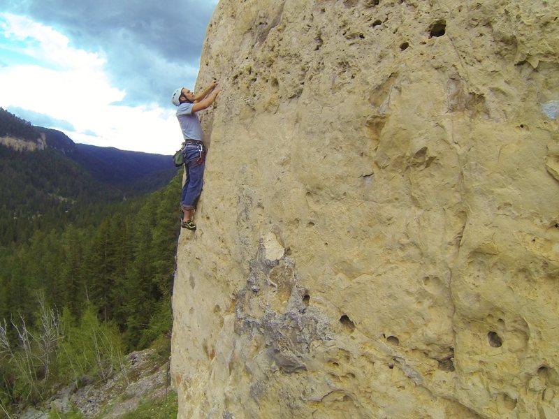 Rock Climbing Photo: Tim climbs Marsha Gets Creamed, 5.10a Bradyism Wal...