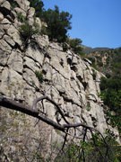 Rock Climbing Photo: Kevin Kitano following on the face section of &quo...