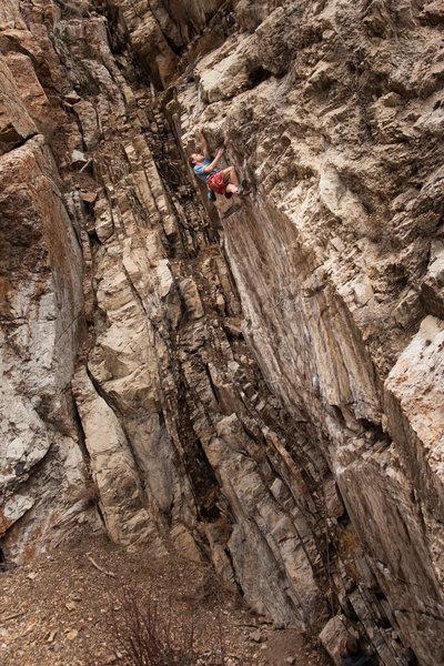 Rock Climbing Photo: Greg Andersen on Intruder Alert.
