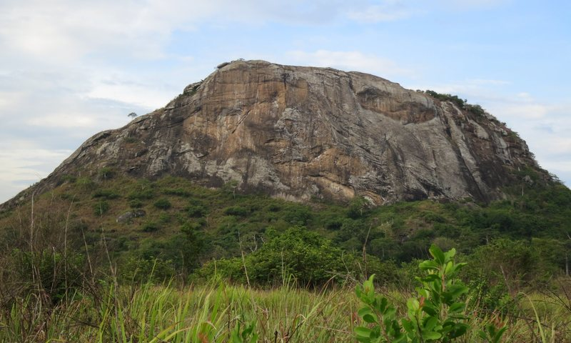 Rock Climbing Photo: South Face of Elephant Rock (about 60m tall)
