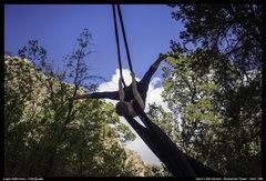 Rock Climbing Photo: Dara's silk aerials