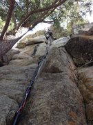 Rock Climbing Photo: Gino on a mission.