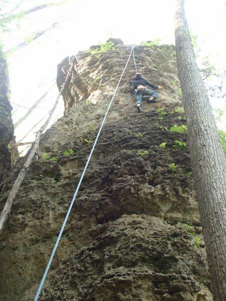 Climbing tarzan