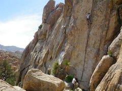 Rock Climbing Photo: Tax Man