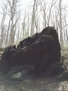 Boulder in Ridley Creek State Park