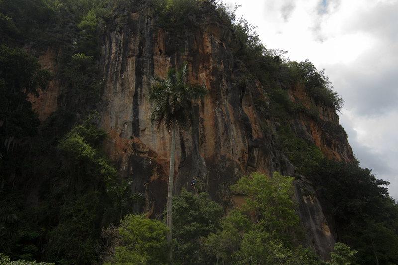 Guajiro Ecologico