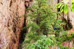 Rock Climbing Photo: RED WALL  Basic Training (5.8) Trad  Crowders Moun...