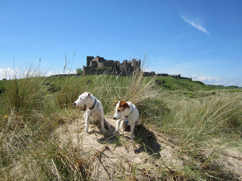Rock Climbing Photo: Bamburgh Castle ,Northumberland