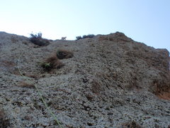 Rock Climbing Photo: About to reach the upper slabs of Pitch 3 (30-40 f...