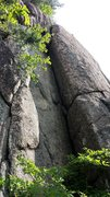Rock Climbing Photo: Unhappy Cracks with some summer foliage.