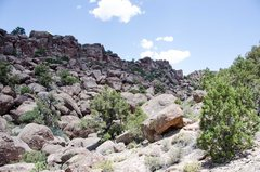 Rock Climbing Photo: The one picture I took of the gully we explored ab...