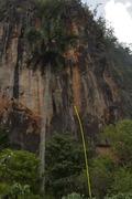 Rock Climbing Photo: la vida es bella