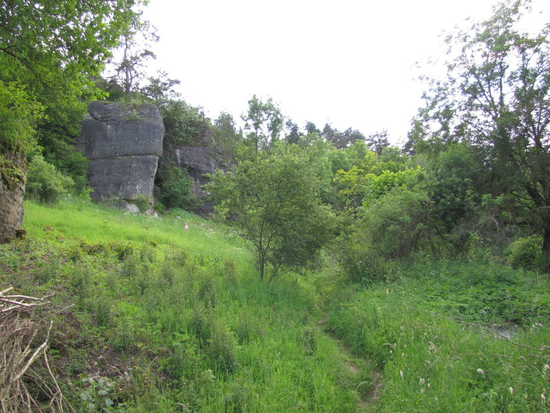 The path to Hainbronner Pfeiler.