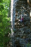 Rock Climbing Photo: Alissa working her way up the steep jugs.  Great r...