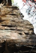 Rock Climbing Photo: no flight of the gumby was taken..