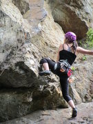 Rock Climbing Photo: Purple Microdot (5.10b)