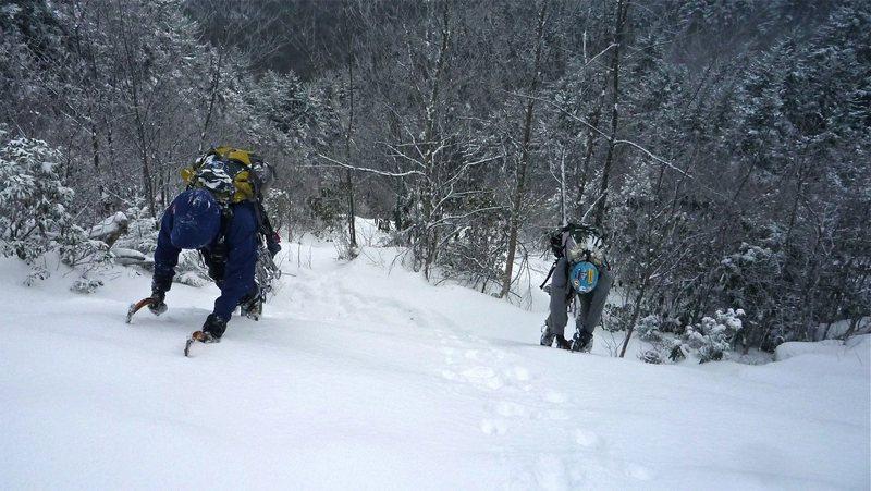 Rock Climbing Photo: NC's primo snow slope!