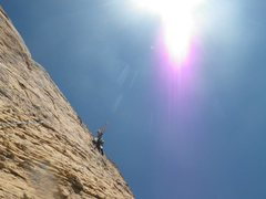 Rock Climbing Photo: Levitation 29