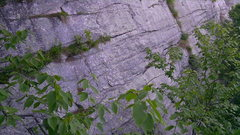 Rock Climbing Photo: The Willie's Weep traverse near the top of P1. Pho...