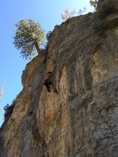 Rock Climbing Photo: post-crux