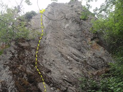 Rock Climbing Photo: Lefty starts on the moss down low then climbs the ...